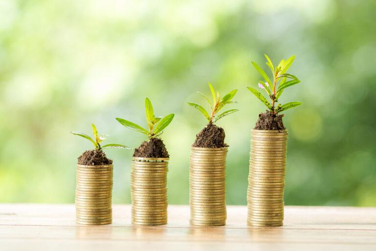 zielone obligacje